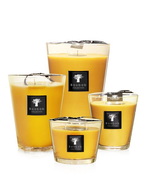 Baobab Collection All Seasons Scented Candles - Zanzibar Spices