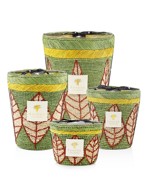 Ravintsara - Ravina - Scented Candles | Baobab Collection