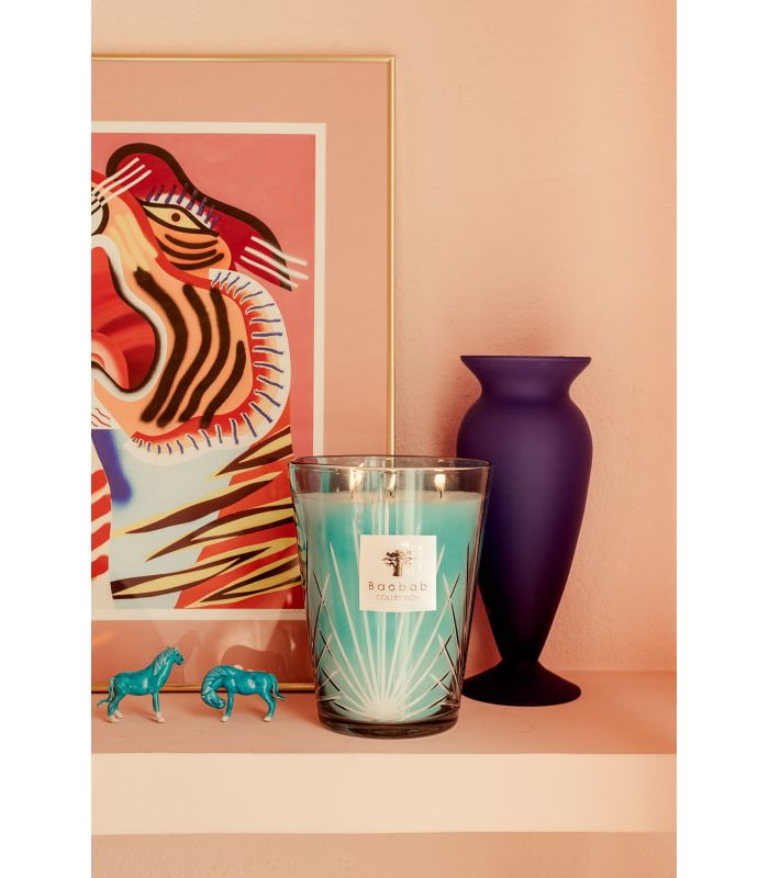 West Palm - Scented Candles | Baobab Collection